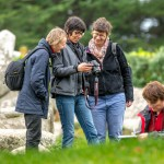 experience bretonne erdeven